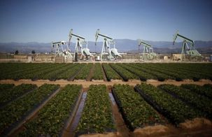 افزایش قیمت 2درصدی نفت برنت