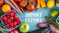بیشترین میزان صادرات از کشور از 3 استان مرزی در جنوب کشور
