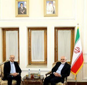 مقام هندی برای رایزنی با ظریف به ایران آمد