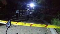 پلیس: حادثه پارک ملت تهران موضوع خاصی نبود