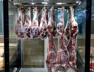 حدود 20 هزار تن گوشت قرمز و مرغ در نمایشگاههای بهاره عرضه میشود