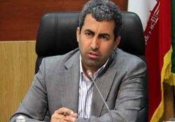 دیدگاه پور ابراهیمی در خصوص افزایش نرخ سود سپرده های بانکی