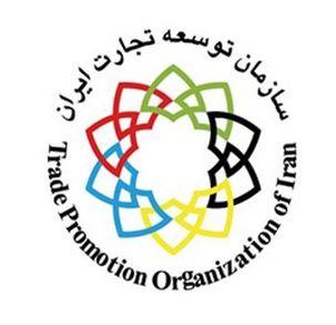 سازمان توسعه تجارت مسئله برگشت ارزهای صادراتی را بررسی میکند