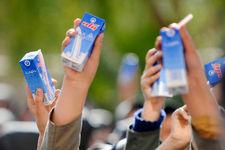 بودجه 1800 میلیارد ریالی توزیع شیر در مدارس ابلاغ شد