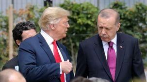 ترامپ خواستار تحریم ترکیه/ سناتورها مخالف تحریم ترکیه