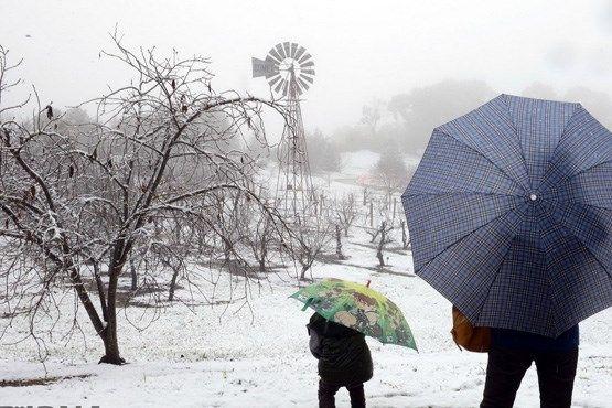 بارش برف و باران از فردا آغاز میشود