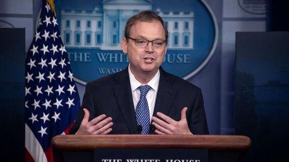 ترامپ رئیس شورای مشاوران اقتصادی کاخ سفید را برکنار کرد