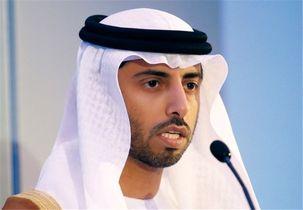 رئیس اماراتی اوپک از اعضای این سازمان خواست حرفی از قیمت نفت نزنند