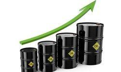 قیمت نفت افزیشی شد