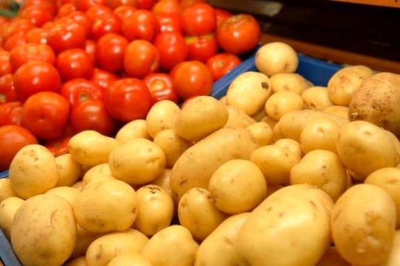 قیمت گوجه فرنگی 20 درصد کاهش یافت