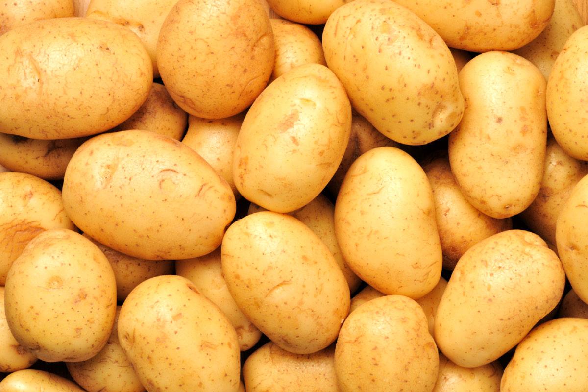 کاهش 1000 تومانی قیمت عمده فروشی سیب زمینی در میدان تره بار