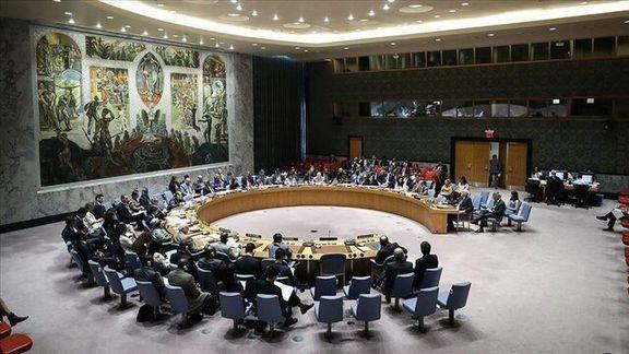 شورای امنیت به عدم دخالت ترکیه در لیبی رای داد