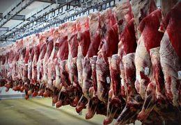 امیرآبادی فراهانی: پسر خاله و پسر معاون وزیر وارد کننده گوشت کشور هستند