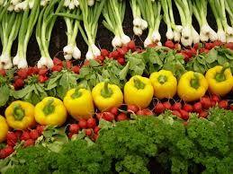 کاهش قیمت میوه در بازار میوه و تره بار/موز کیلویی 13 هزار و 500