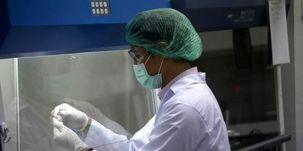 رشد بازارهای سهام جهان به دنبال آزمایش واکسن کرونا توسط شرکت «نواواکس»