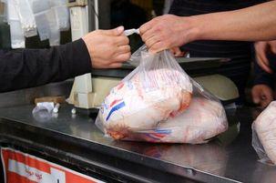 محموله 7 تن مرغ گرم با نرخ دولتی در بازار عرضه شد
