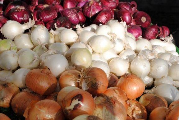 ممنوعیت صادرات سیب زمینی و پیاز لغو میگردد